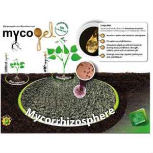 agroshop kimitec mycogel fruit tree