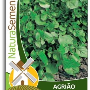agroshop sementes agrião de terra