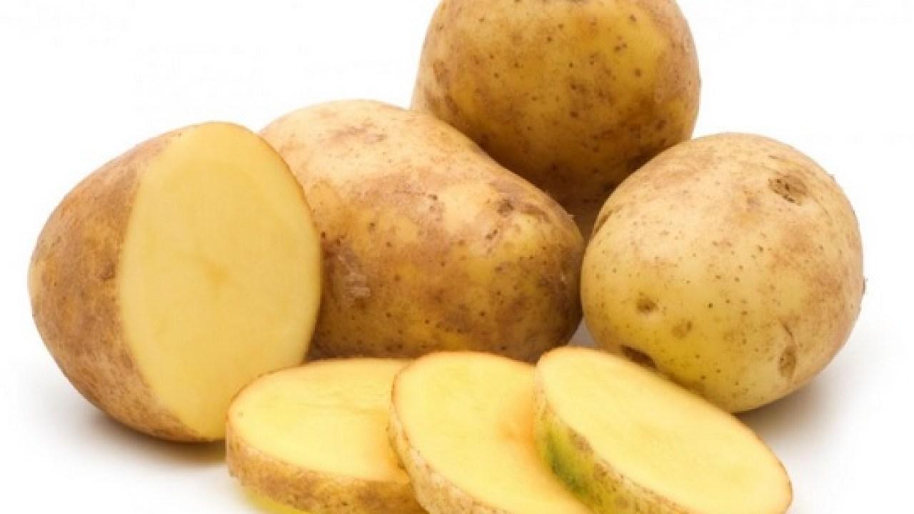 Penyakit busuk kering pada tanaman kentang