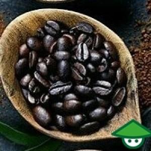 5 Manfaat kopi yang wajib anda ketahui untuk kesehatan