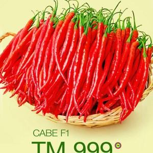 Hibrida TM-999