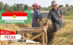 PERTANIAN INDONESIA 2018