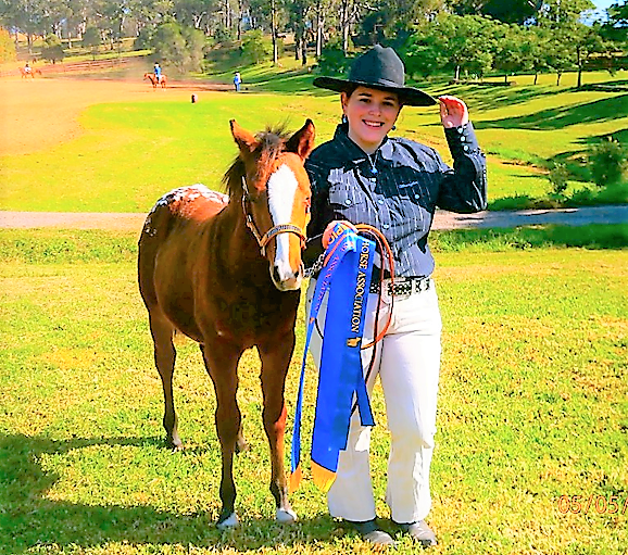 sofala show horse program pearl sofaer st ives agshows nsw your country movement the will be held at showground on weekend of may 18 and 19 2019
