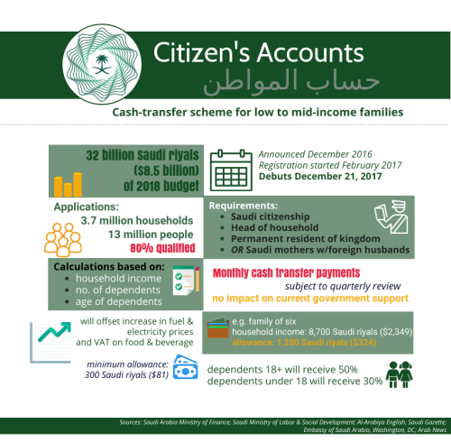 Citizen's Accounts