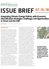 Integrating Climate Change Policies with Economic Diversification Strategies: Challenges and Opportunities in Oman and the UAE