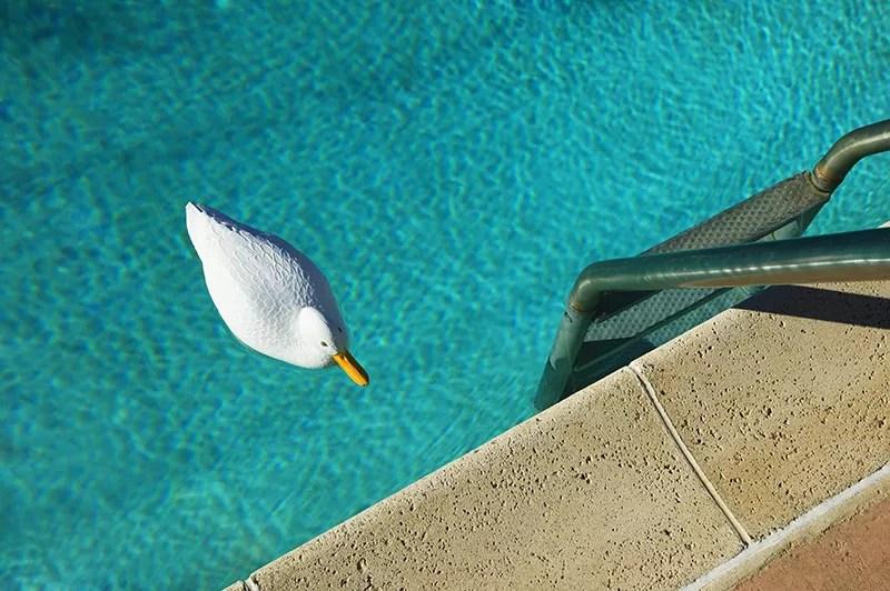 Concrete Pool Decks in San Diego | Agundez Concrete