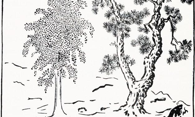 El árbol Fa-Nien-Ts'ing y el árbol Mon-Tien-Sing