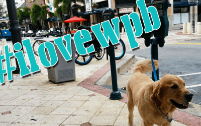 Introducing the #ilovewpb Hashtag!