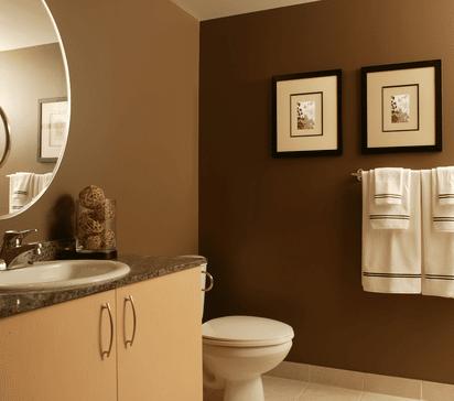 What kind Bathroom Paint should I use?