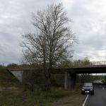 60-Dessau-Roßlau Dessau Weg Große Mückenberge Blick Nach Nordwesten Zu Brücke B184