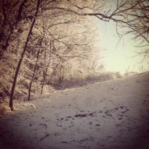 Early morning snow...isn't it beautiful?