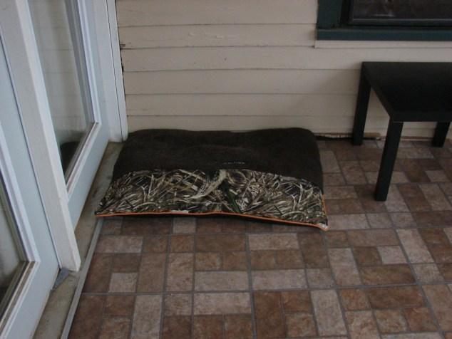 porch floor 3
