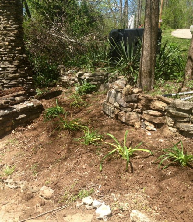 gardening with rocks, planting