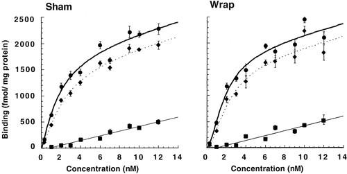 γ-Aminobutyric Acid (GABA)-A Function and Binding in the