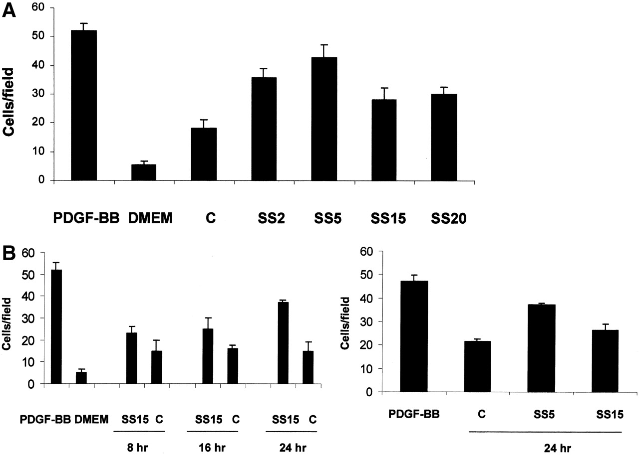 Different Effects of High and Low Shear Stress on Platelet