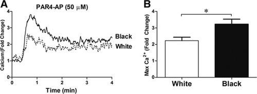 Mechanism of Race-Dependent Platelet Activation Through