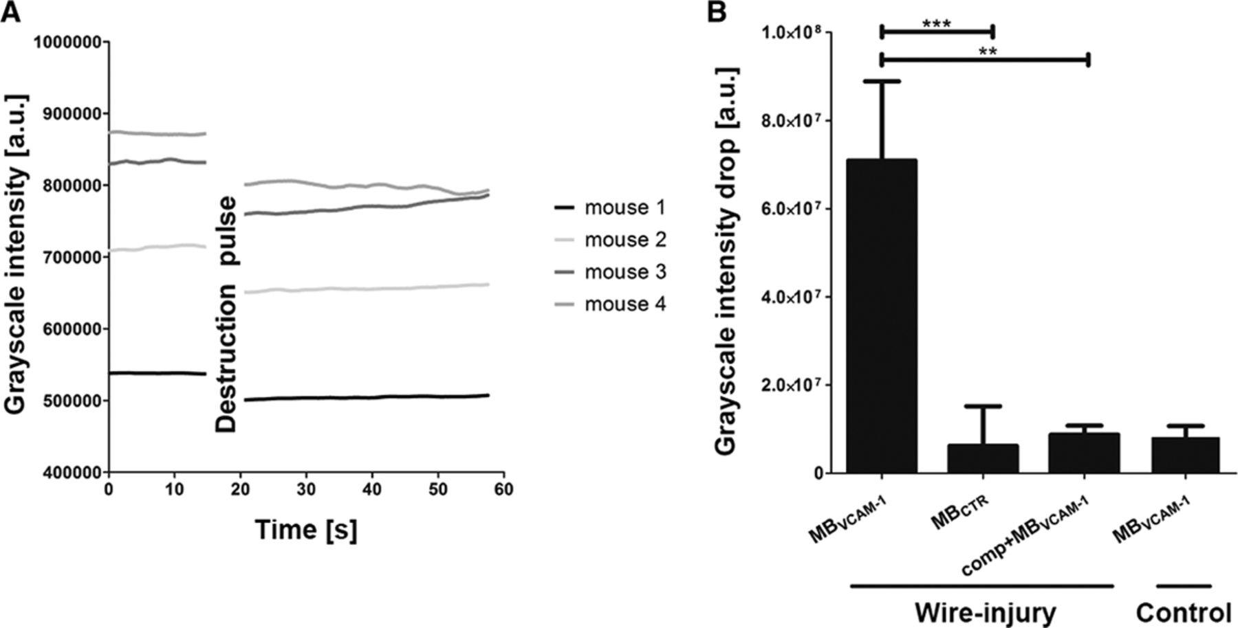 Noninvasive Molecular Ultrasound Monitoring of Vessel