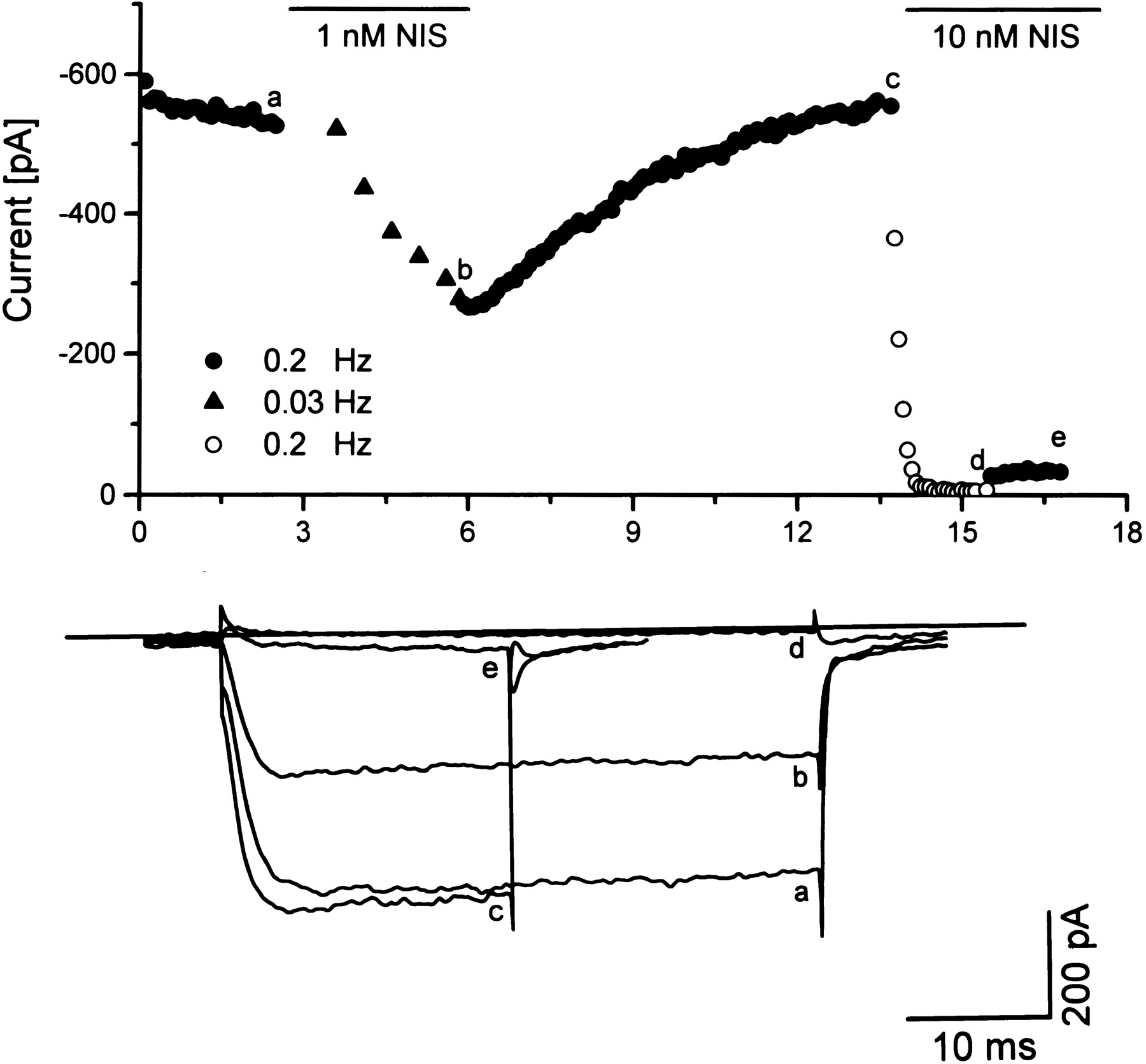 Alternatively Spliced IS6 Segments of the α1C Gene