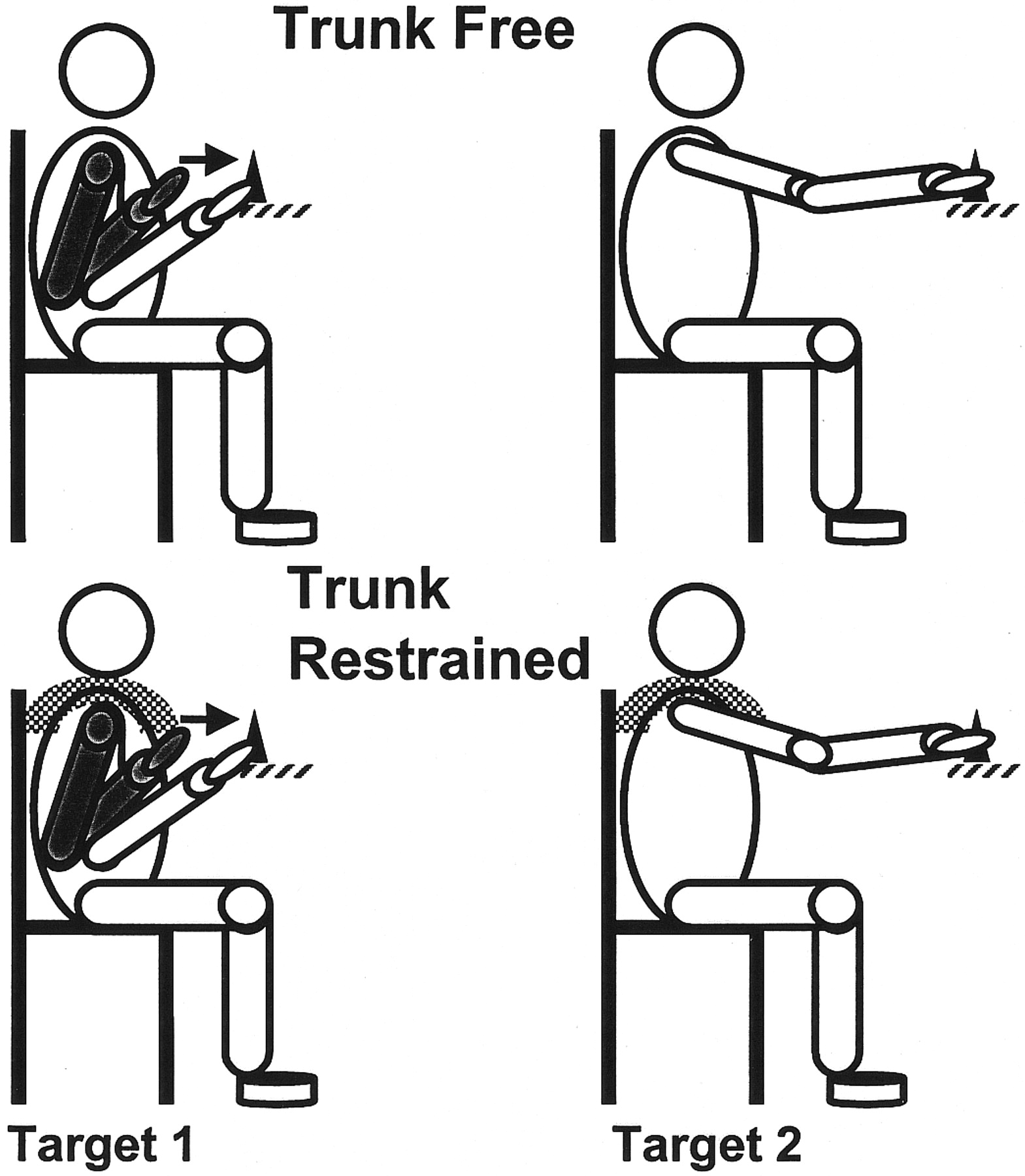 Effect Of Trunk Restraint On The Recovery Of Reaching