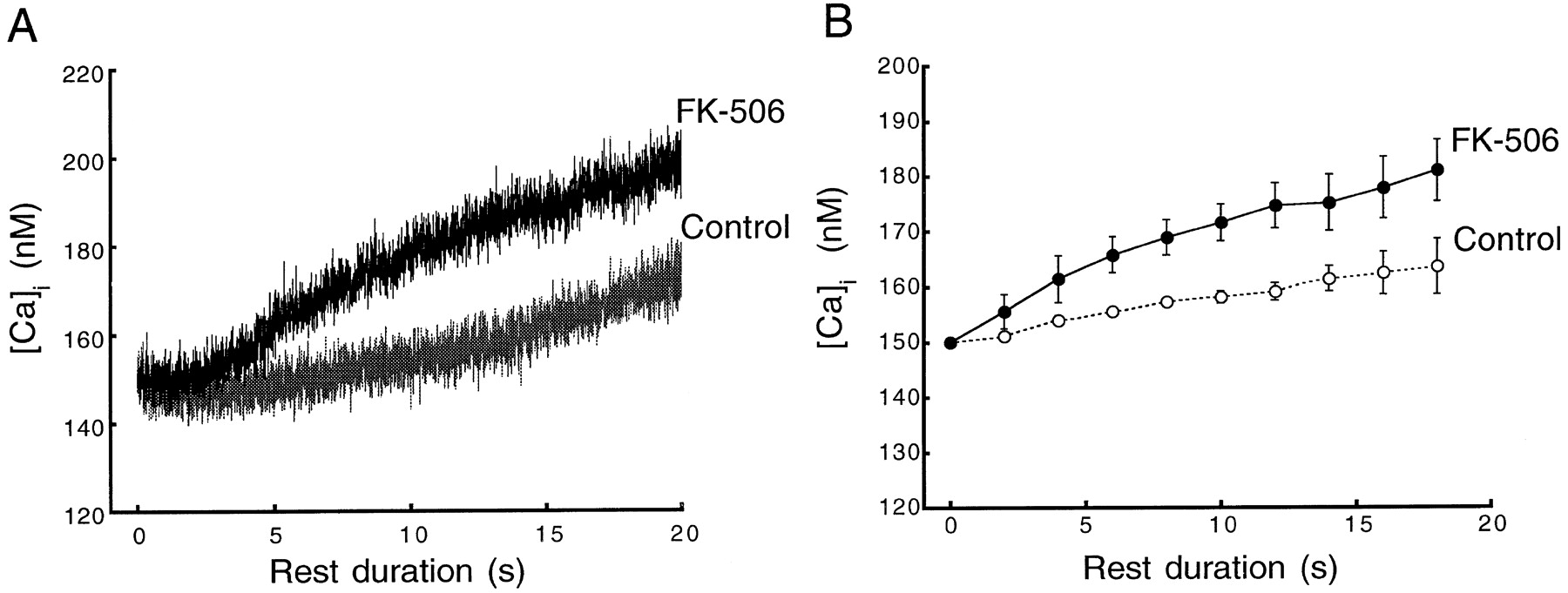 Effects of FK-506 on Contraction and Ca2+ Transients in
