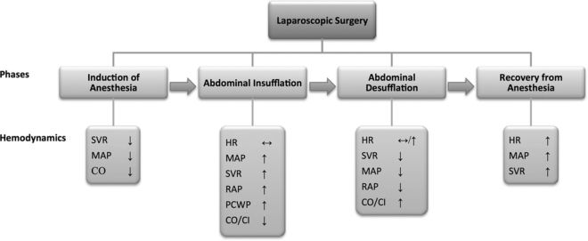 Cardiovascular and Ventilatory Consequences of Laparoscopic Surgery |  Circulation