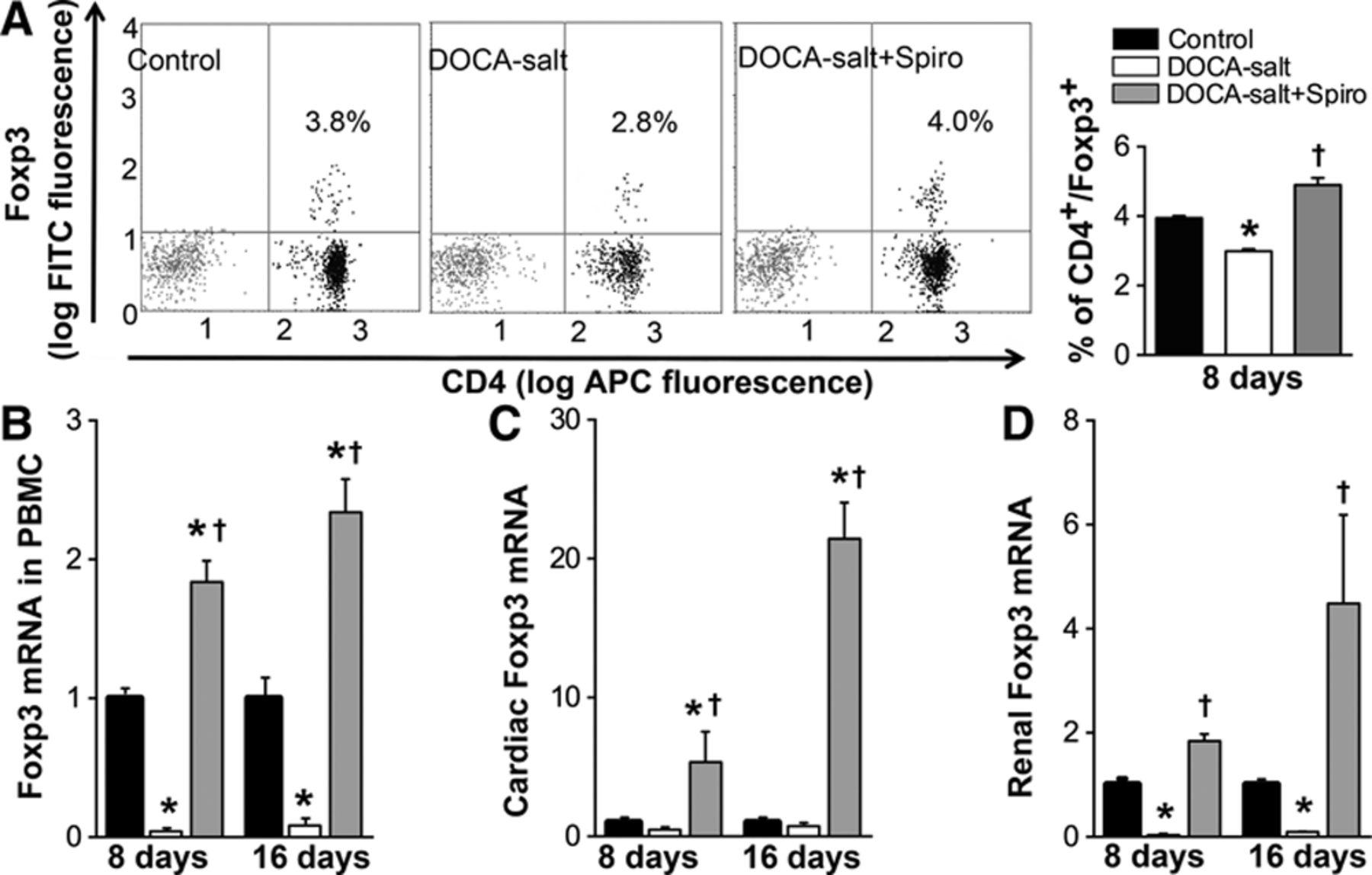 Spironolactone Decreases Doca Salt Induced Organ Damage By