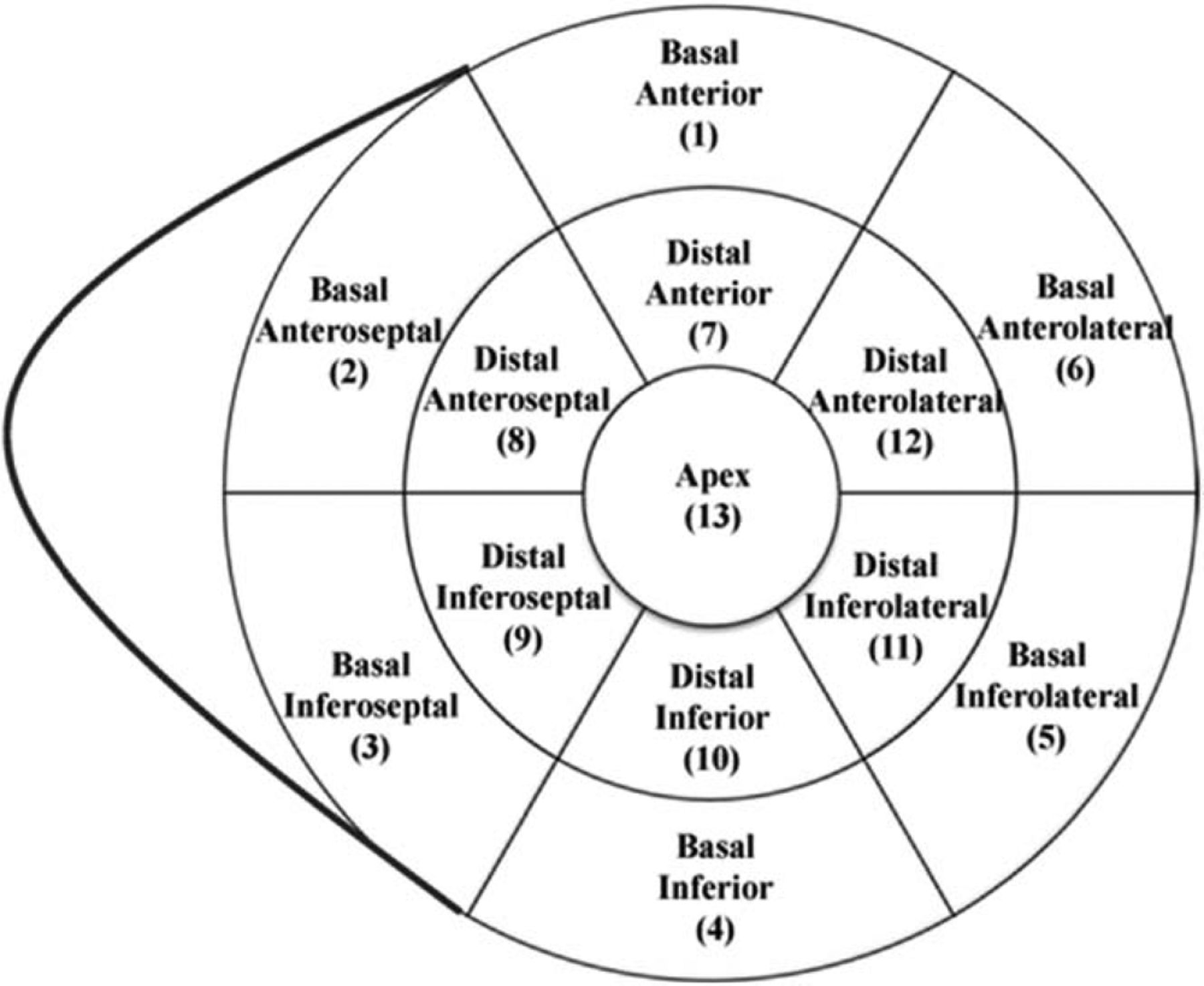 Aligning Coronary Anatomy and Myocardial Perfusion
