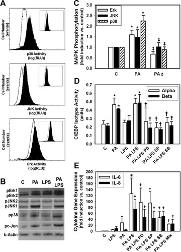 Nutrient Modification of the Innate Immune Response