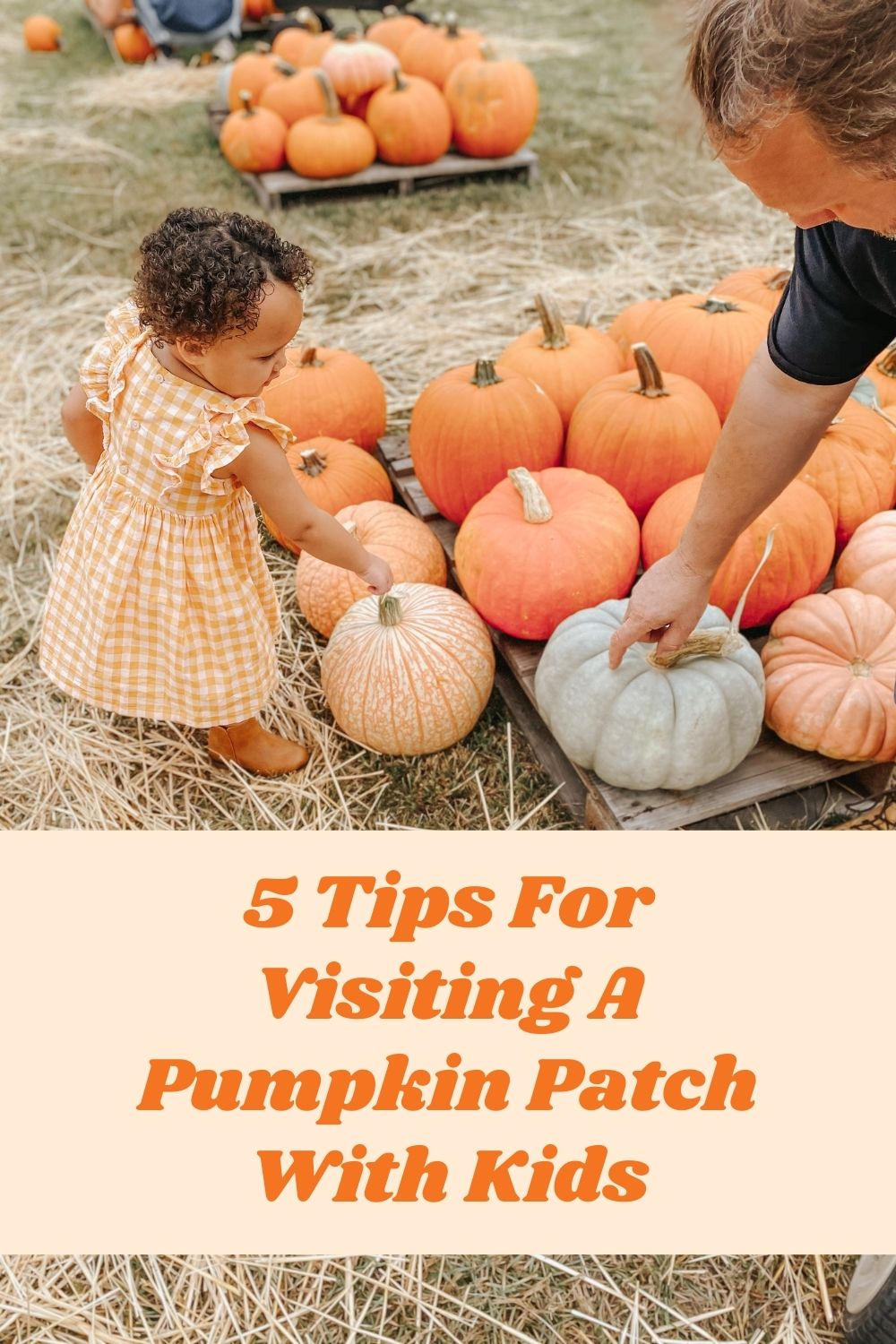 5 Tips For Visiting The Pumpkin Patch With Kids