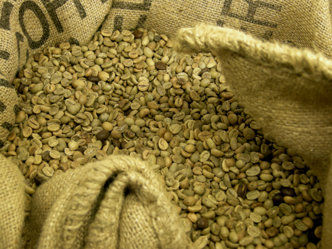 are green coffee bean supplements worth all the hype health enews