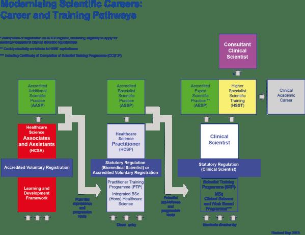 Msc-career-training-pathway-sep-2013- Academy