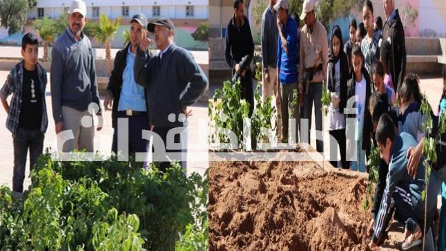 إنطلاق عملية التشجر بمدرسة يوسف بن تاشفين بالداخلة