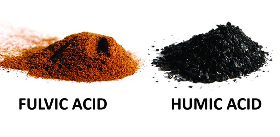 Humic Acid Vs Fulvic Acid What Is The Difference