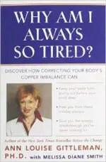 Why am I always so tired - Ann Gittleman