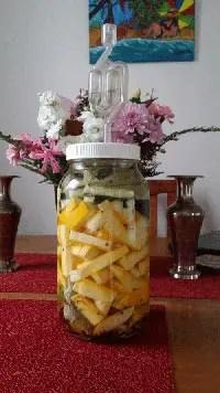 Lacto fermented zucchini recipe