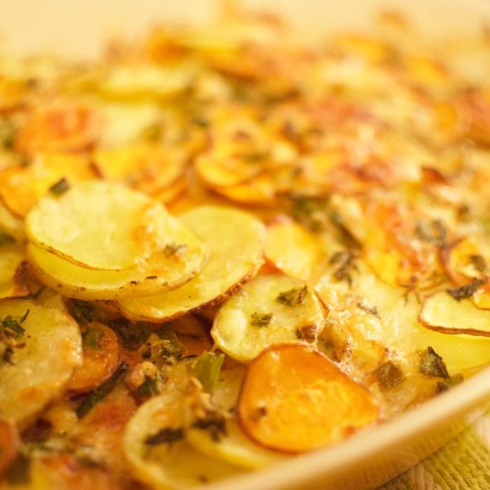 gold & sweet potato gratin