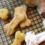 homemade pumpkin & peanut butter dog biscuits
