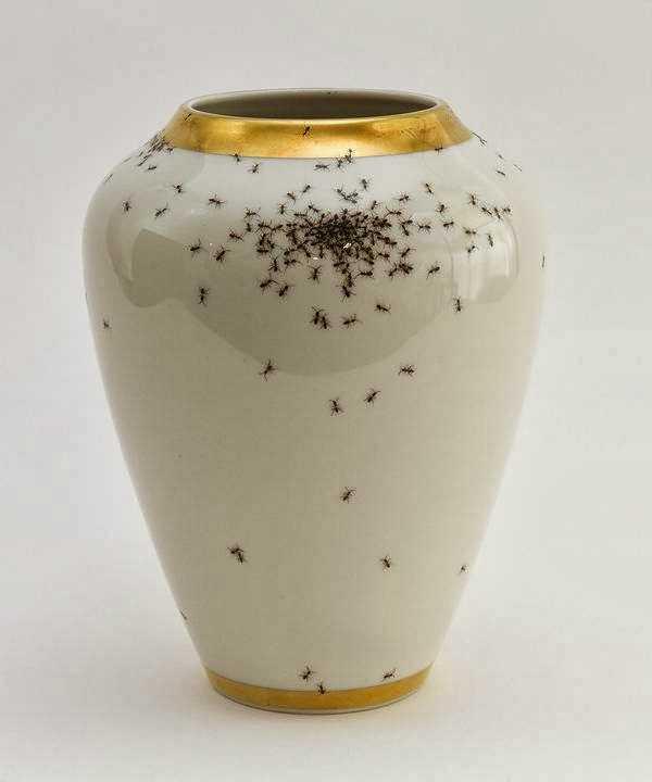 أواني خزفيه رسم عليها نمل... تبدو حقيقية