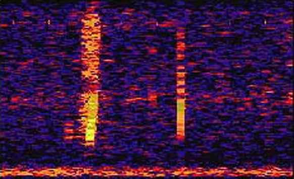 بالفيديو: صوت مهول قادم من قاع المحيط الهادي