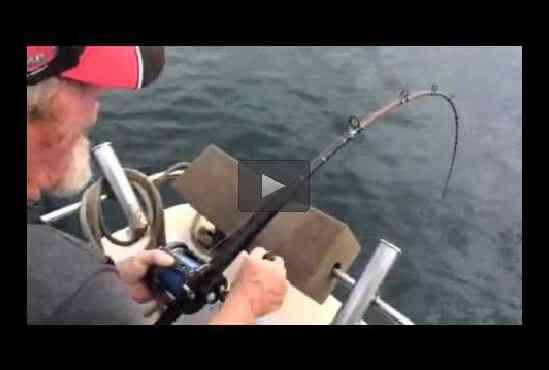 بالفيديو: قرش يهاجم صيادا ويسرق منه صيده