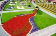 أجمل صور الحديقة المعجزة المقامة في دبي