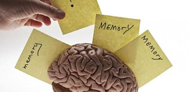 تنشيط الذاكرة و علاج مشكلة النسيان بوصفات طبيعية فعالة