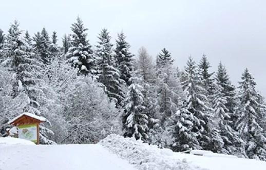 Winter1_LOW