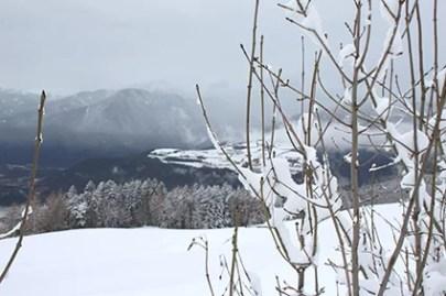Winter6_low