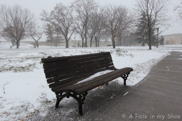 Insearchofsnow039