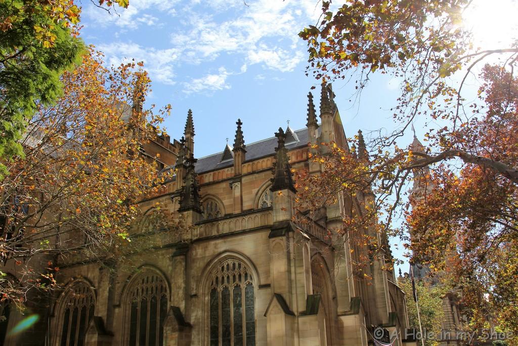 Sydney016
