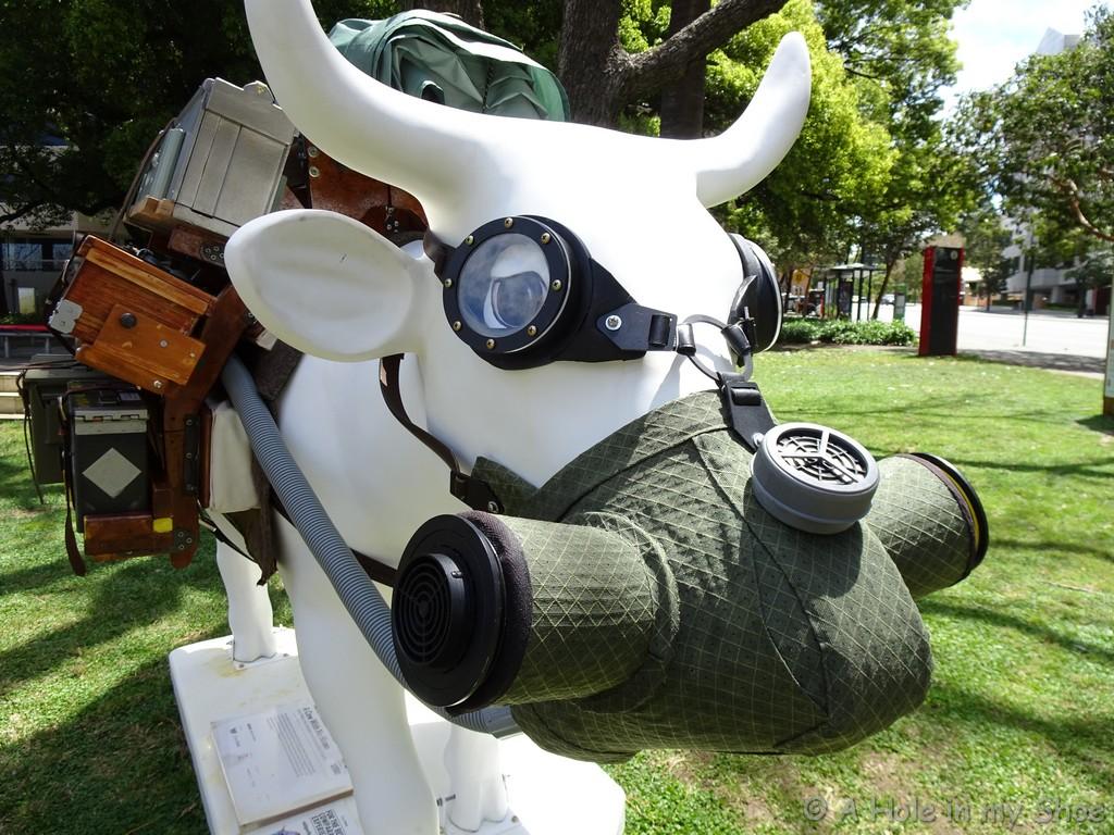 cowparade014