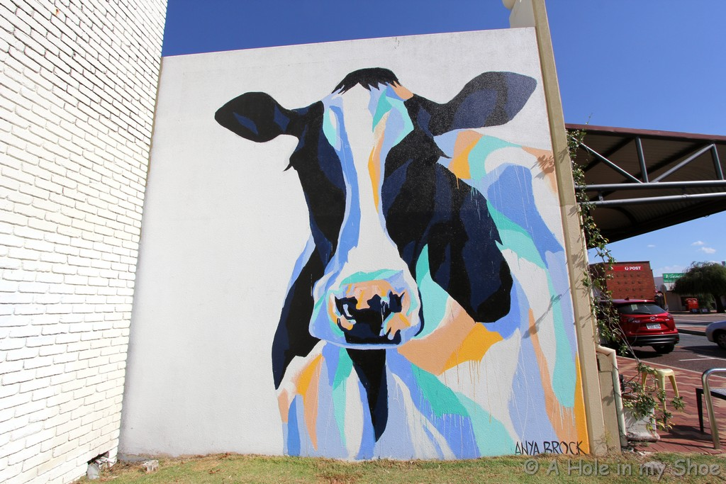 Colourful cow on the side of Sugar & Spice Inglewood. Artist Anya Brock