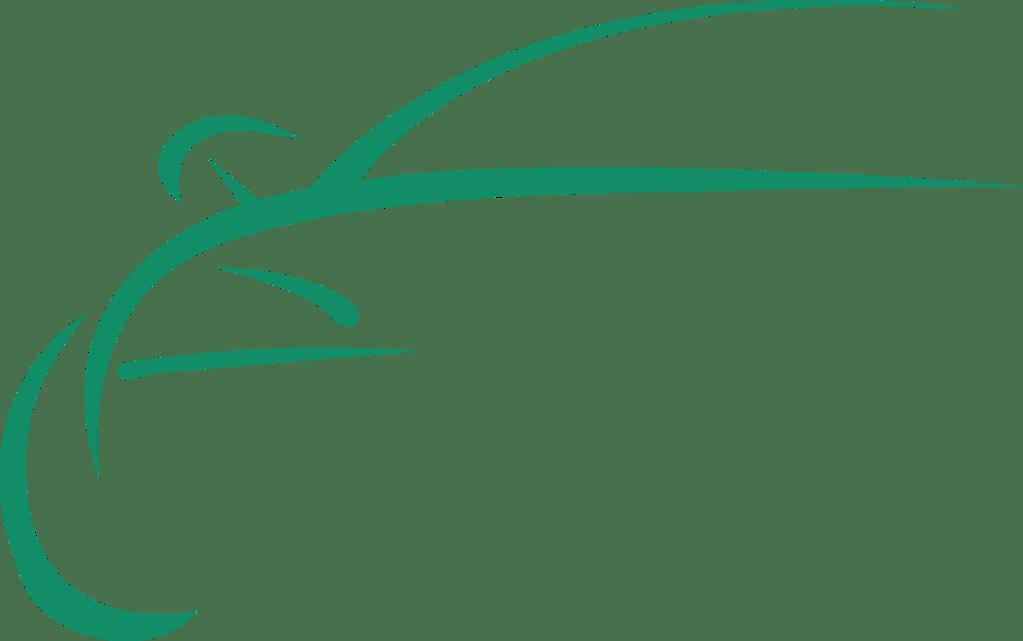 Logo Talleres Vergara