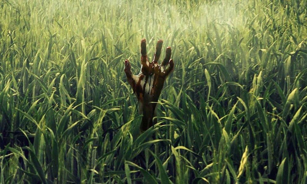 Campo do Medo | Filme da Netflix baseado em obra de Stephen King ganha trailer